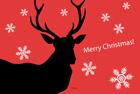 トナカイのクリスマスカード