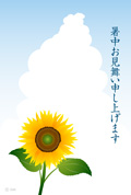 Thunderhead and summer greeting sunflower