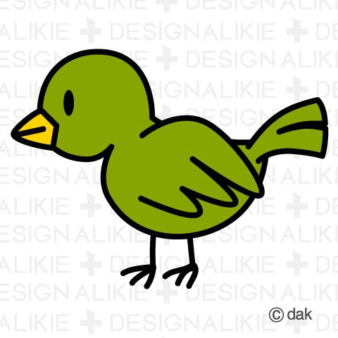 Bird free material