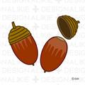 Free Acorn Illustrations