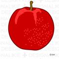 Free Apple illustration