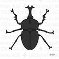 Free Beetle