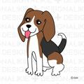かわいいビーグル犬