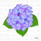 Hydrangea Flower Clip Art