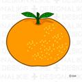 Free Orange Fruit icon