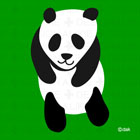 Chara loose panda