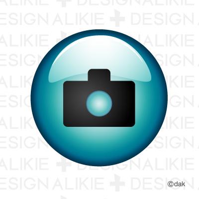Mark camera button