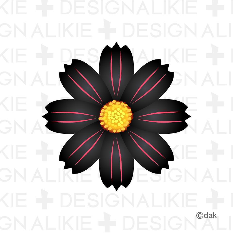 Cosmos Black Design