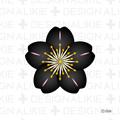 黒デザインの桜の花
