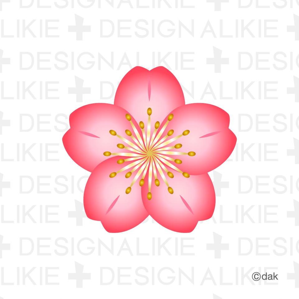 Cherry Blossom Flower Clip Art : 桜の花びらの : すべての講義