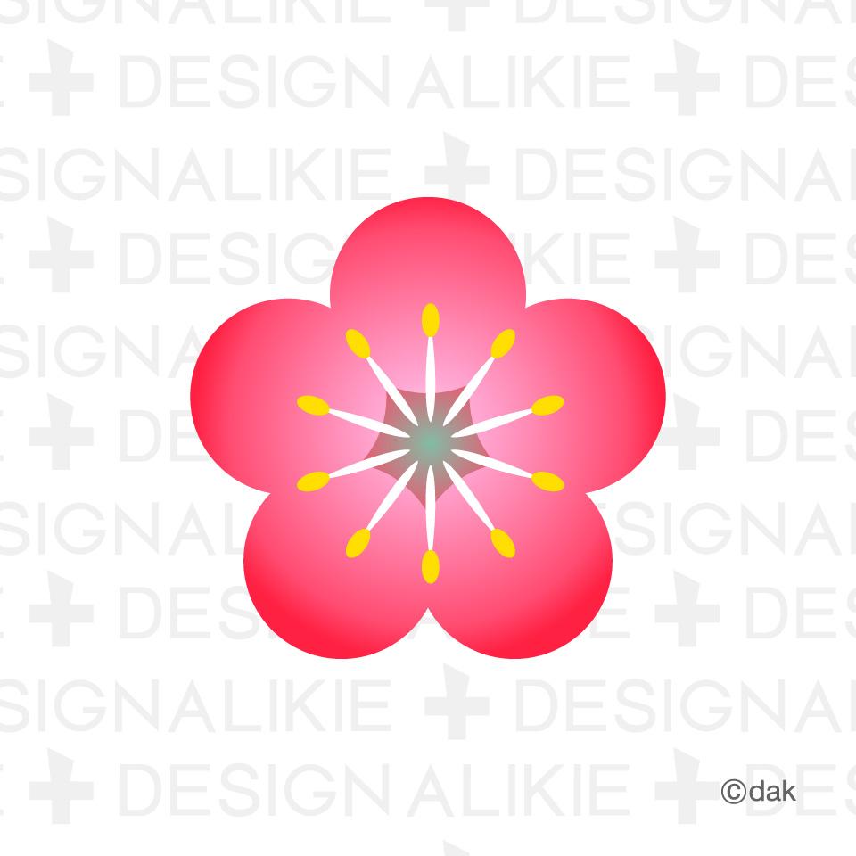 Free flower material of plum