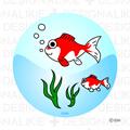 Illustration of goldfish free parent-child