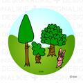 木とウサギ